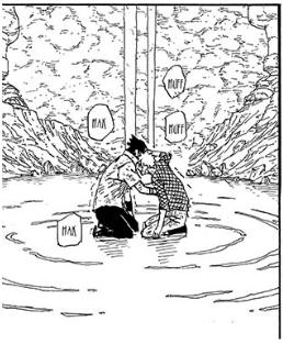 Naruto 697 [Dan]